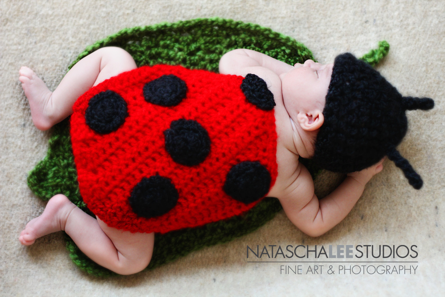 Little Lady Bug Broomfield, Colorado Baby Photography by Natascha Lee Studios