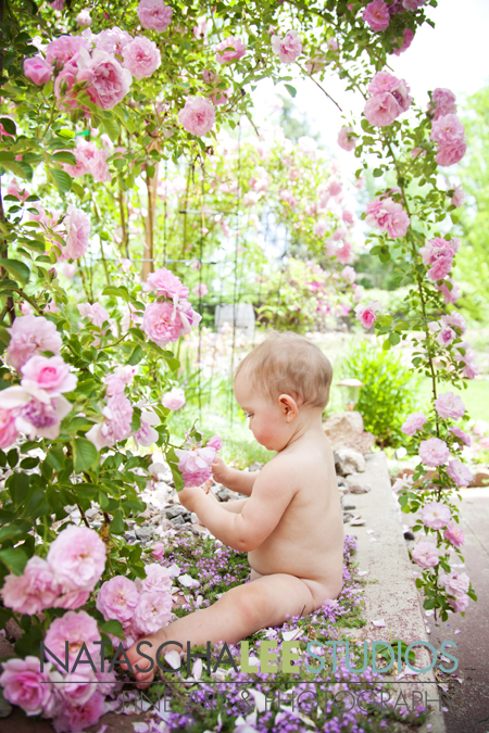 Broomfield Baby Photography by Natascha Lee Studios, Rose Baby Spring Flower Session
