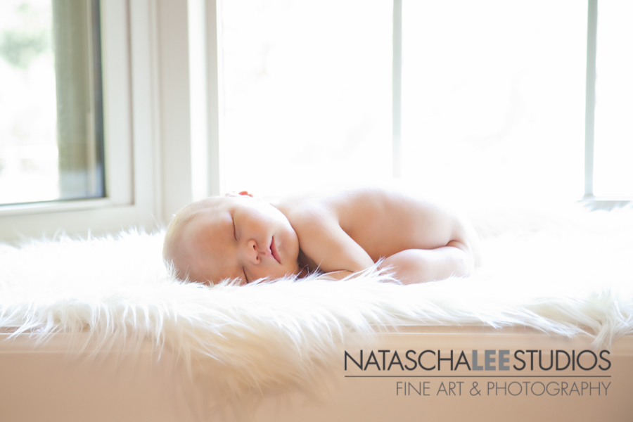 Broomfield Newborn Photography by Natascha Lee Studios