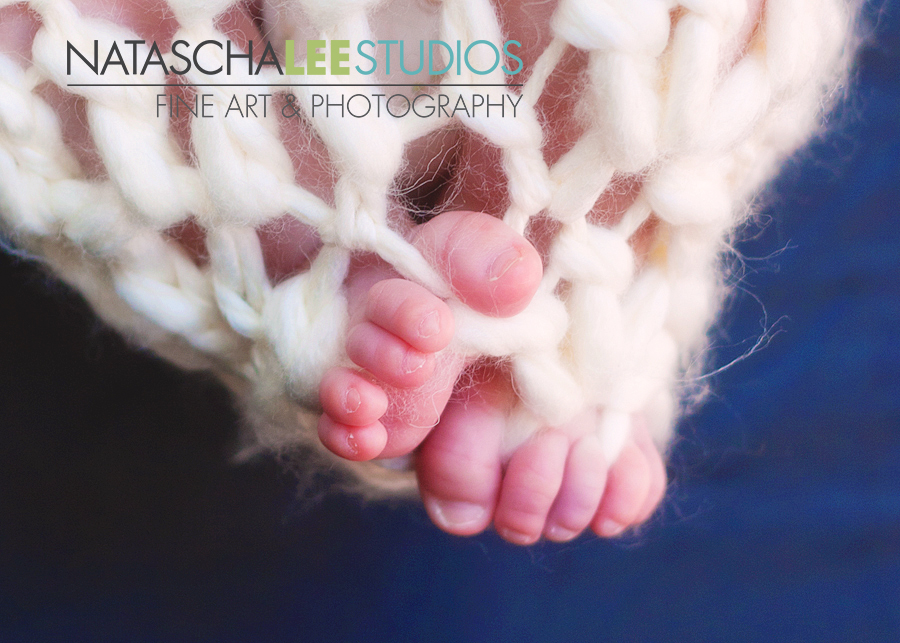 Baby Toes Infant Photography by Natascha Lee Studios in Broomfield, Colorado