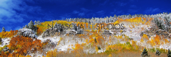 Vail Fall Colors 2013 by Natascha Lee Studios
