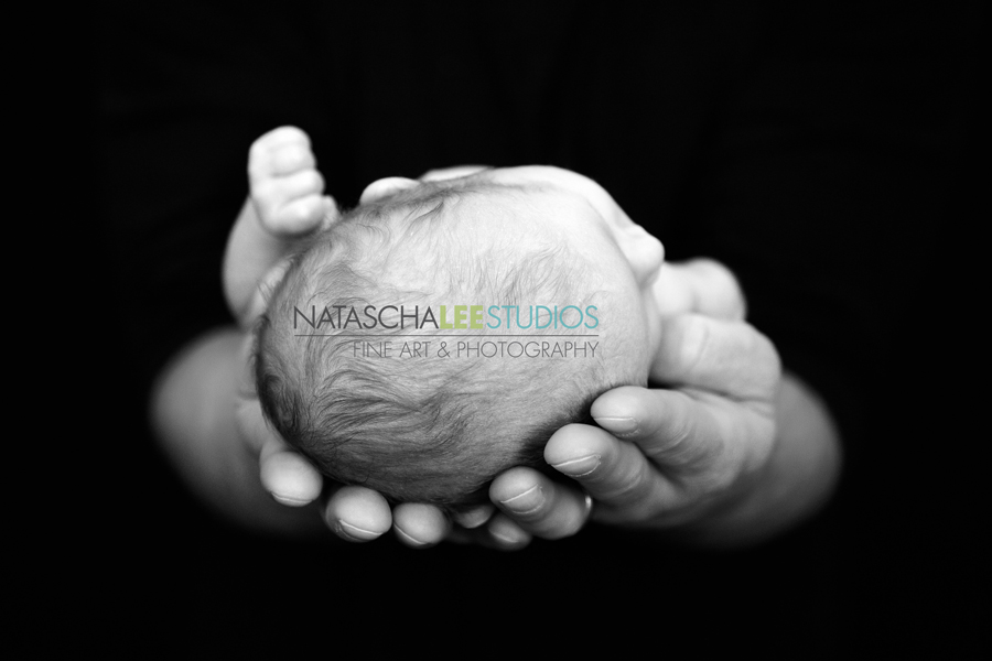 Cherry Creek Baby Photography Portraits by Natascha Lee Studios - Black and White , Infant in Daddy's Hands