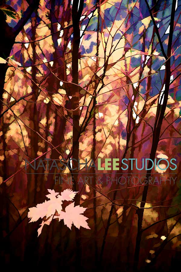 Fall Leaf Series - Art by-Natascha-Lee-Studios-l-sfw