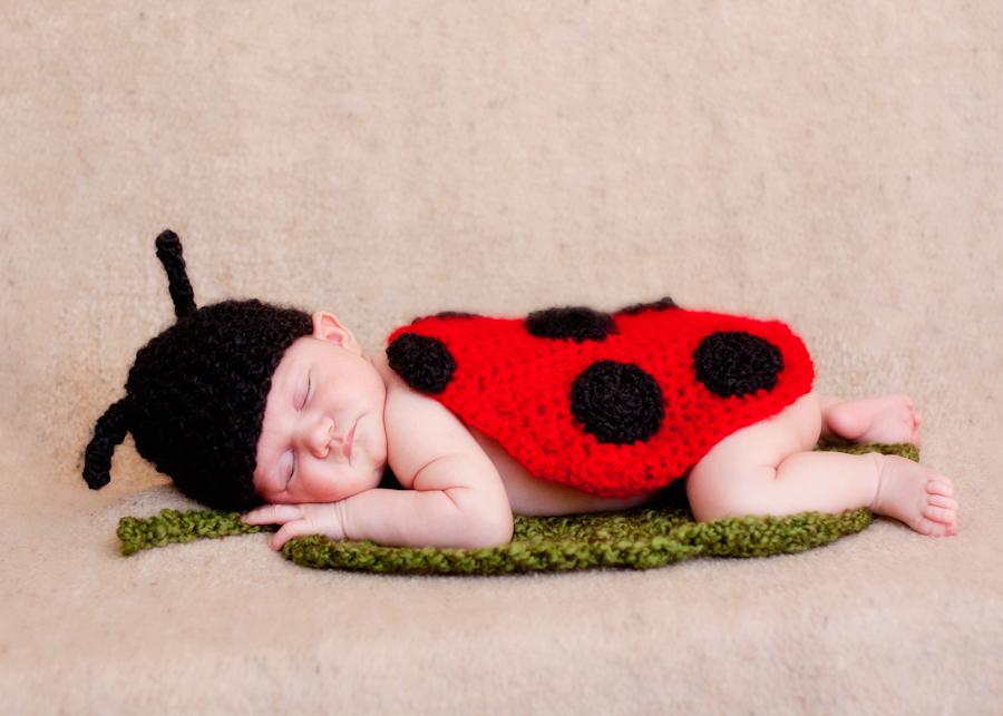 Denver Baby Photographer - Ladybug