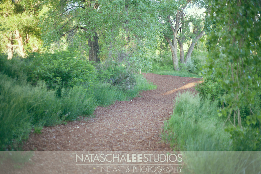 Outdoor Family Portraiture in Westminster, Colorado - Lush Green Nature Park Locations