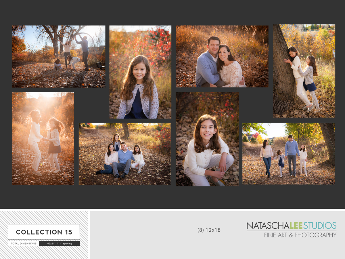 Wall Collection Canvas Cluster - Denver Family Photographer