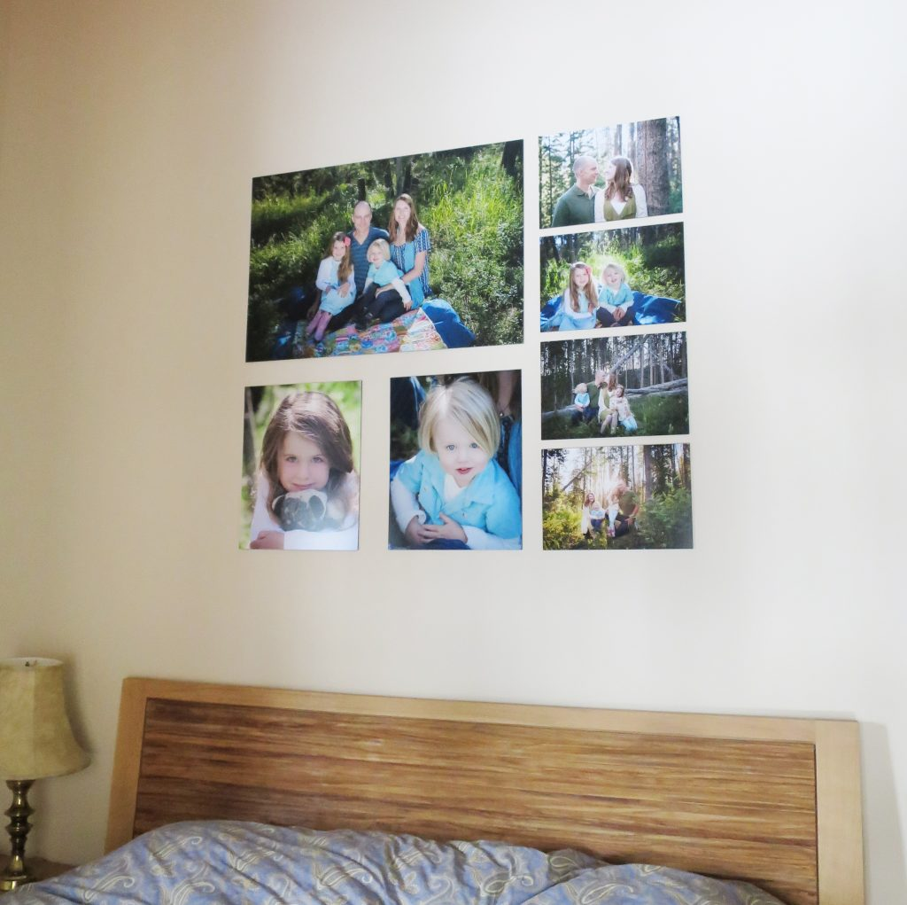 6 ideas to display your winter park family photos